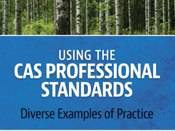 Using the CAS Professional Standards book cover