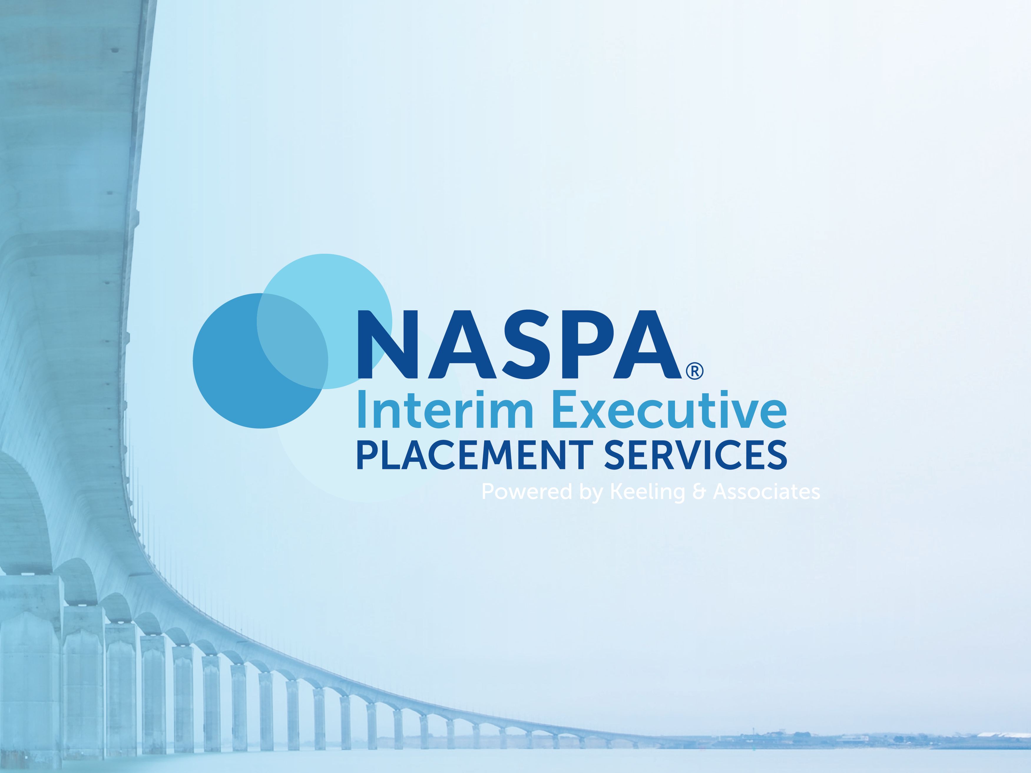 Interim Executive Placement Services Logo